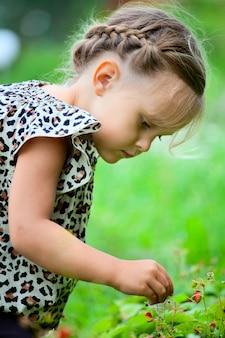 Bambina che mangia le fragole