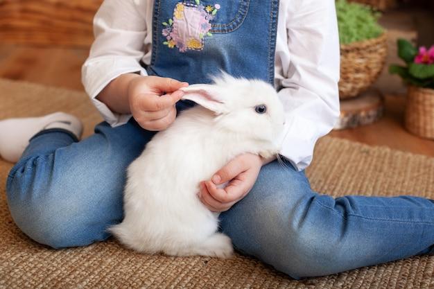 Bambina che tiene coniglio lanuginoso sveglio, primo piano. adorabile coniglietto bianco birichino nel bambino mani. simpatico coniglio domestico coccolato dal suo proprietario. amicizia. concetto di amore per gli animali. assistenza sanitaria. pasqua