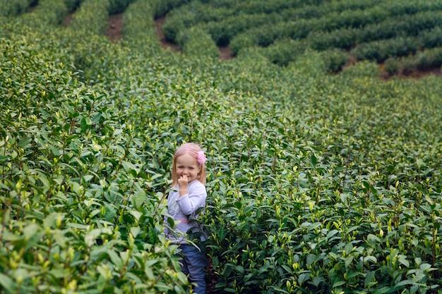Bambina in piedi su una piantagione di tè