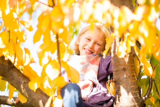 Bambina o bambino in albero in autunno colorato o caduta
