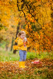 Bambina sveglia che raccoglie le mele nell'erba verde