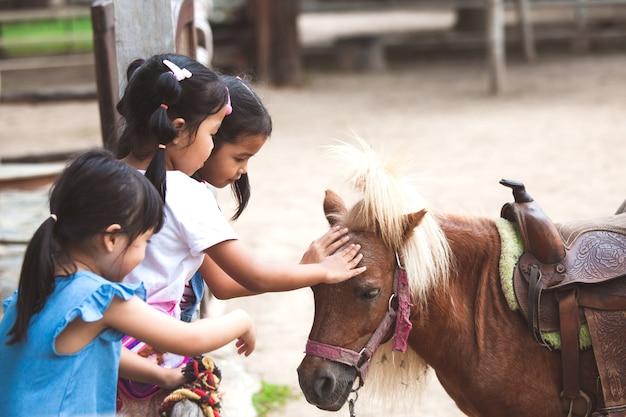 Bambini asiatici toccando e giocando con pony in fattoria con divertimento