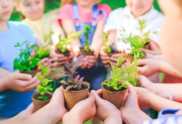 Bambini che tengono le piante in vasi di fiori