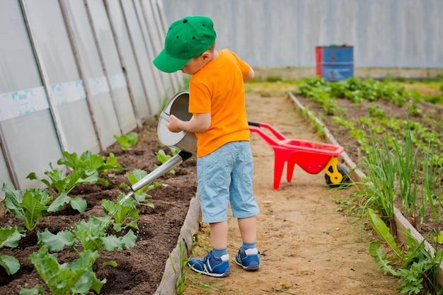 Bambino che innaffia il giardino