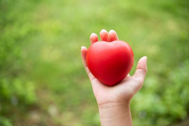 Bambino che tiene cuore di gomma rosso