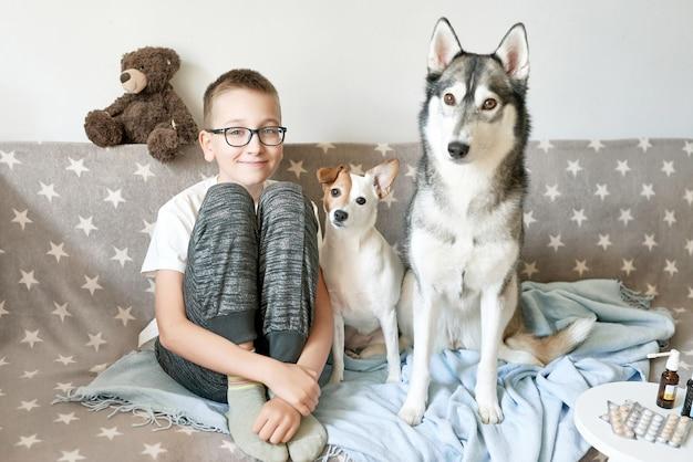 Bambino con cani husky e jack russell terrier sono seduti sul divano, il ragazzo ha il raffreddore e prende le medicine