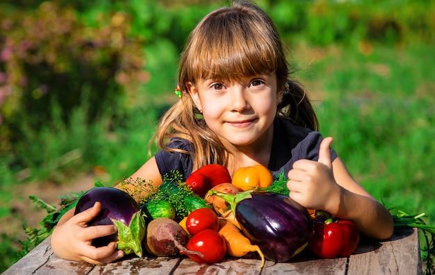 Bambino e verdure in fattoria. messa a fuoco selettiva