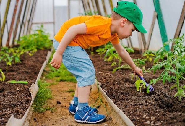 Bambino in giardino