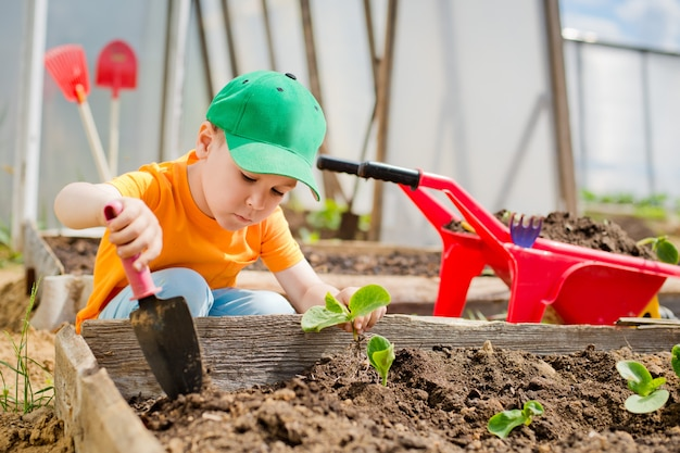 Bambino piantato nel giardino