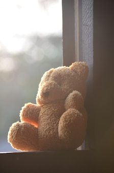 Bambola orso appesa alle finestre