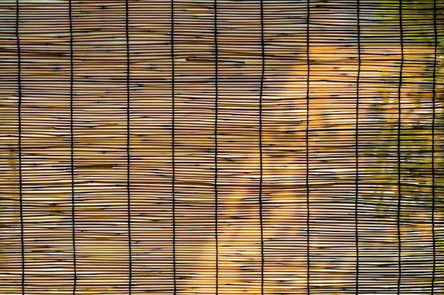 Bamboo blinds background with sunlight