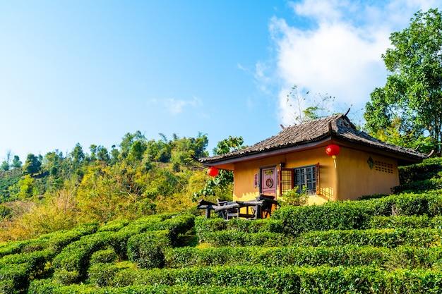 Ban rak thai, uno stabilimento cinese in mae hong son, tailandia.
