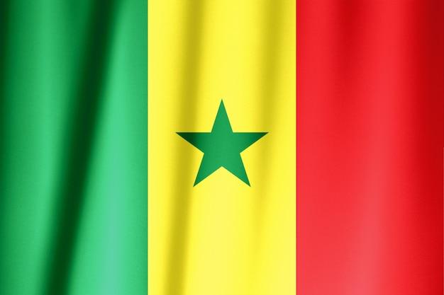 Bandiera del senegal sventola al vento