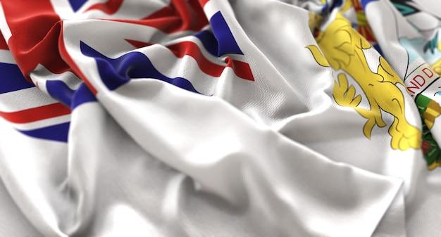 Bandiera del territorio antartico britannico increspato splendidamente sventolando macro close-up shot