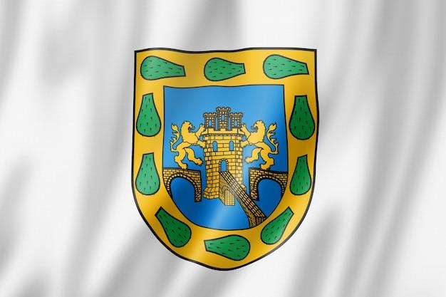 Bandiera della città del messico