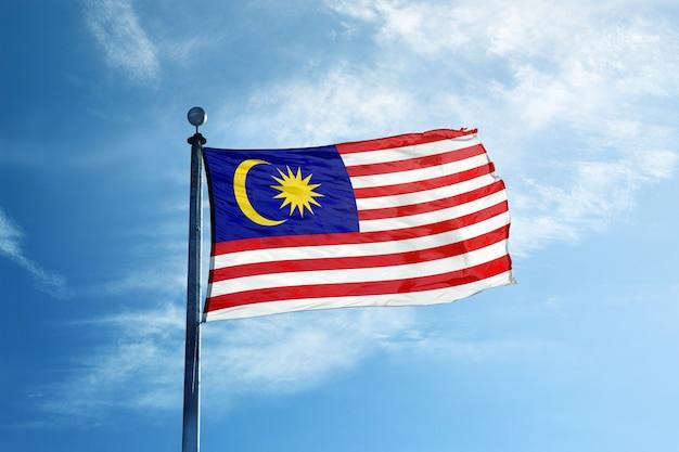 Bandiera della malesia sull'albero