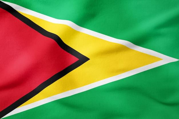 Bandiera nazionale della guyana - forma rettangolare simbolo patriottico