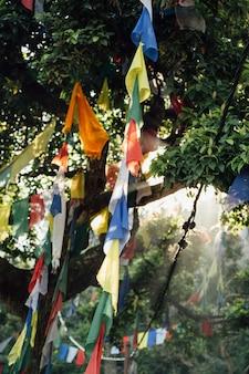 Bandiere che pendono dagli alberi nel nepal