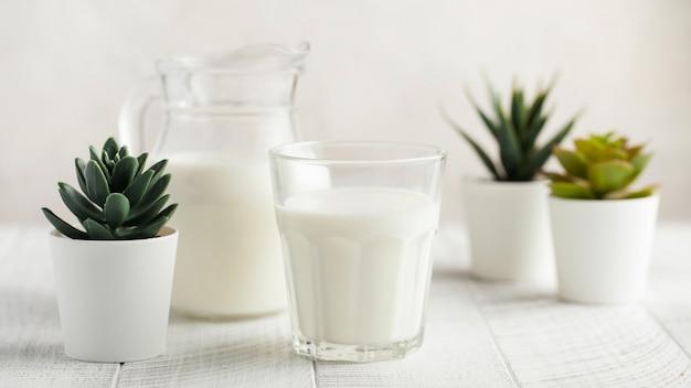 Banner di bicchiere di latte, brocca di latte, piante verdi in vaso su uno sfondo chiaro