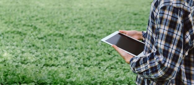 Banner panoramico agronomo che utilizza lo sviluppo di dati di analisi computerizzata su tablet mobile nella serra idroponica di vivai da giardino, agricoltura intelligente, tecnologia digitale e concetto di innovazione agricola