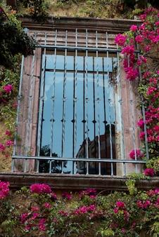 Bar sulla finestra, zona centro, san miguel de allende, guanajuato, messico