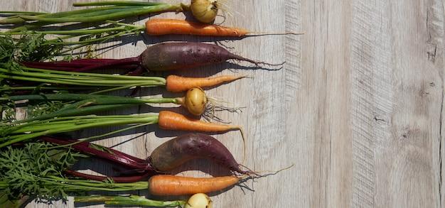 Barbabietola, cipolla e carota organiche nostrane appena raccolte sulla tavola di legno. vista dall'alto, copia spazio. bandiera