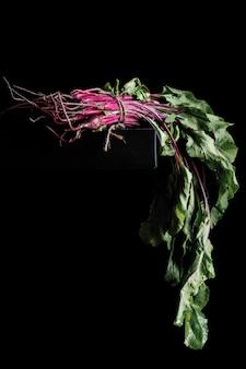 Barbabietola con cime, con foglie verdi al buio