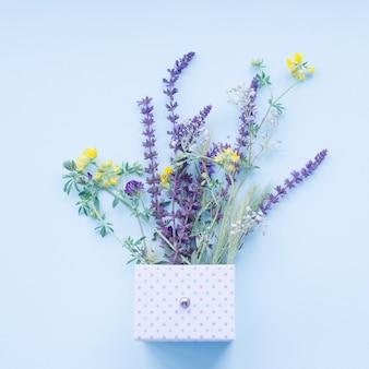 Bei fiori di lavanda nella casella a pois su sfondo blu