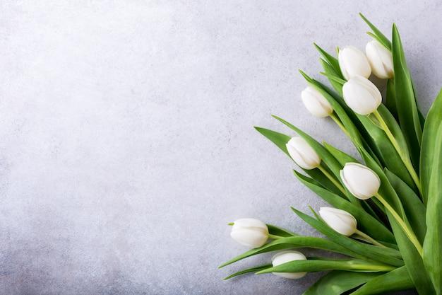 Bei tulipani bianchi