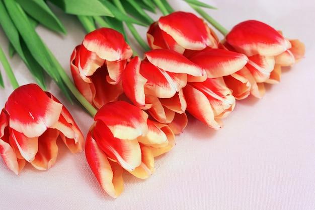 Bei tulipani rossi sul tessuto leggero. fiori di primavera per carta o cartolina. disposizione diagonale.