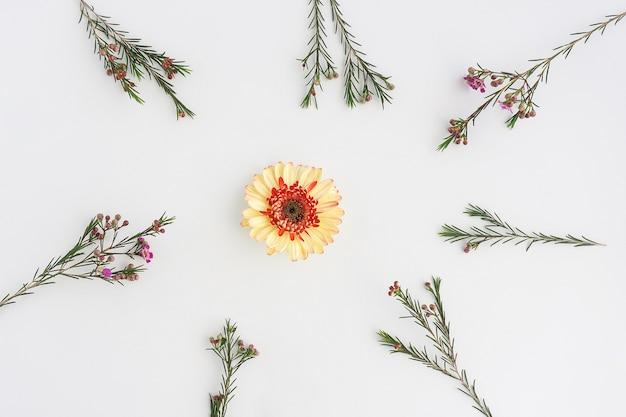 Bel fiore circondato da altri impianti