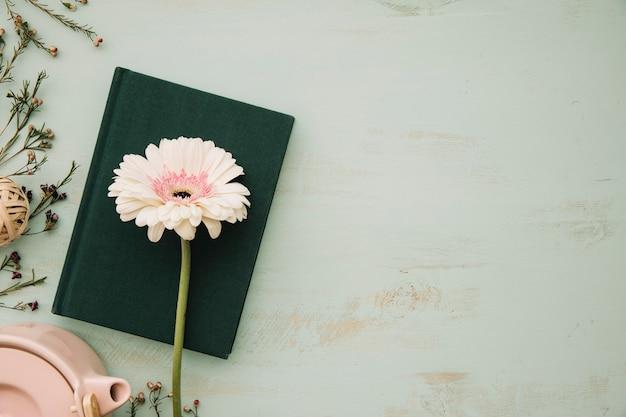 Bel fiore sul libro