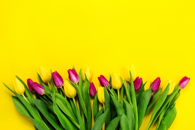 Bel giallo viola sopra fiore