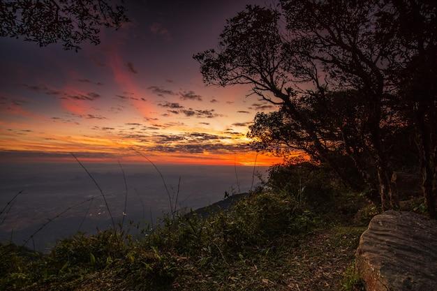 Bella alba sul santuario di fauna selvatica di phu luang, provincia di loei, thailandia.