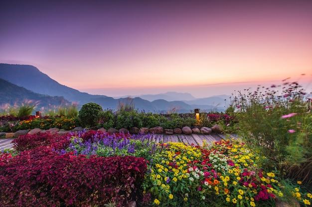Bella alba sull'alta montagna in khao-kho, tailandia.
