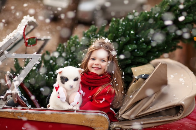 Bella bambina con un cucciolo in auto di natale