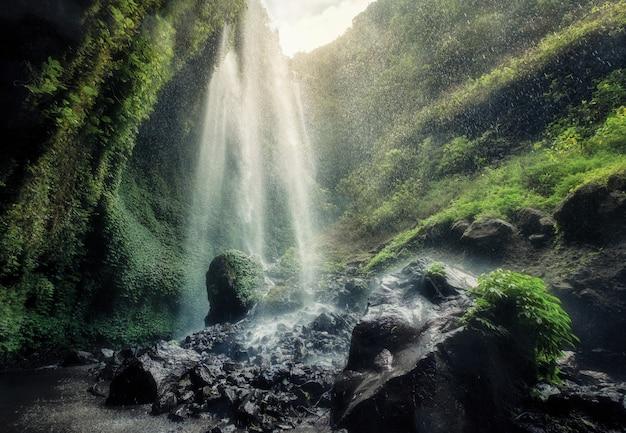 Bella cascata di madakaripura che scorre su roccioso in insenatura