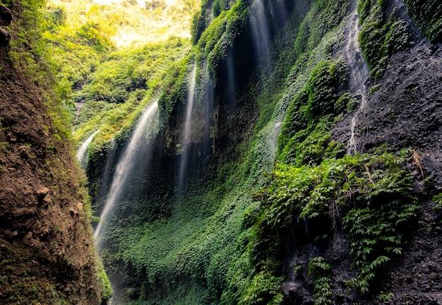 Bella cascata di madakaripura in valle rocciosa