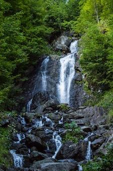 Bella cascata in montagna nella foresta.