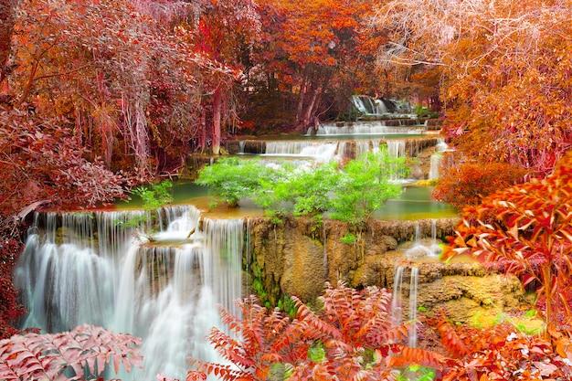 Bella cascata nella foresta profonda