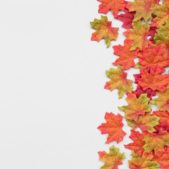 Bella composizione delle foglie di autunno con lo spazio della copia a sinistra su fondo bianco