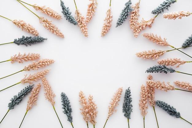 Bella composizione realizzata con foglie di grano su sfondo bianco