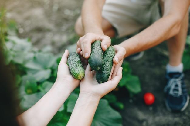 Bella coppia lavora in un giardino