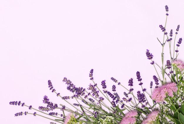Bella cornice di fiori di lavanda