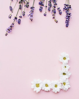 Bella cornice fatta con fiori freschi su sfondo rosa