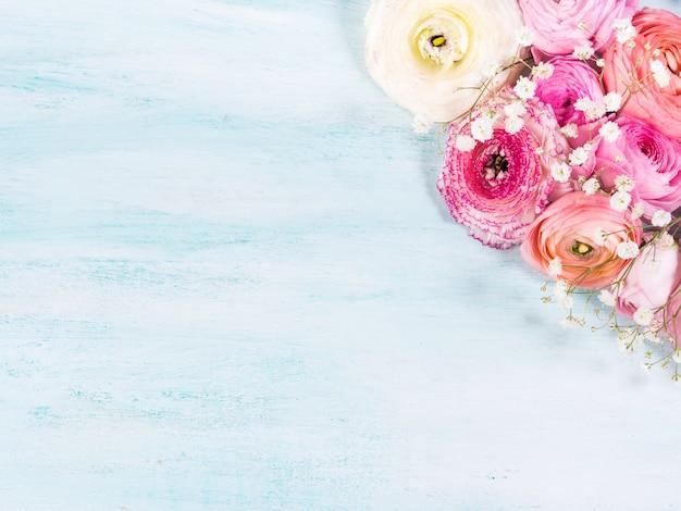 Bella cornice rosa ranuncolo su fondo in legno turchese.