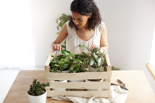 Bella donna africana che sorride prendendosi cura delle piante in scatola nel luogo di lavoro. copia spazio.