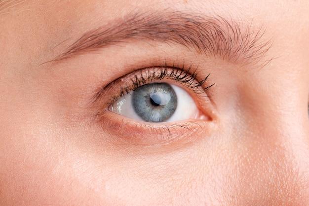 Bella donna del primo piano con gli occhi azzurri