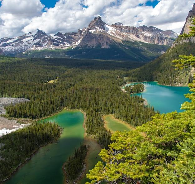 Bella escursione del lago opabin nel giorno nuvoloso in primavera, yoho, canada
