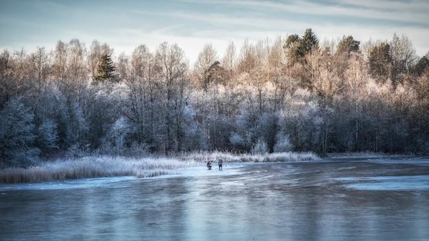 Bella giornata invernale con pesca sul ghiaccio. panorama di un paesaggio invernale con un lago ghiacciato e alberi bianchi nel gelo
